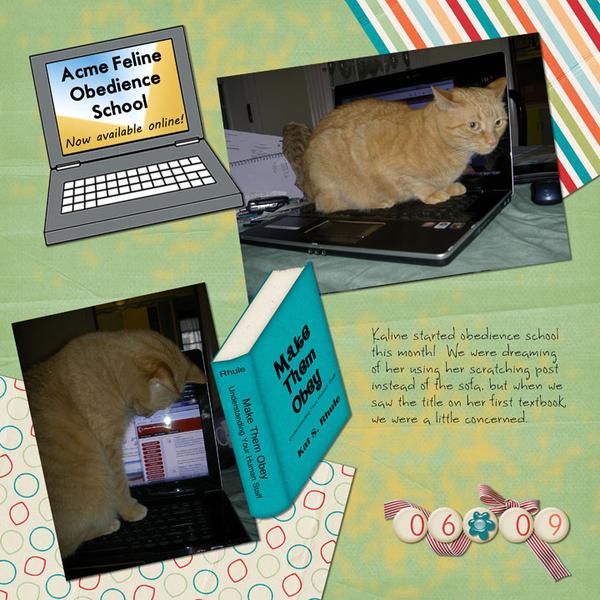 Acme Feline Obedience School