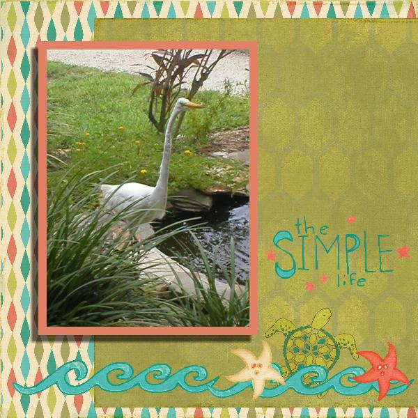 Sanibel Island Egret