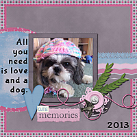 2013-08-25-Daisy.jpg
