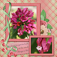 led_my_valentine_mini_-_Page_063.jpg