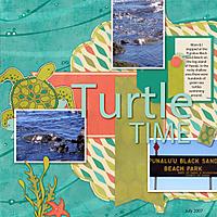turtle-time.jpg