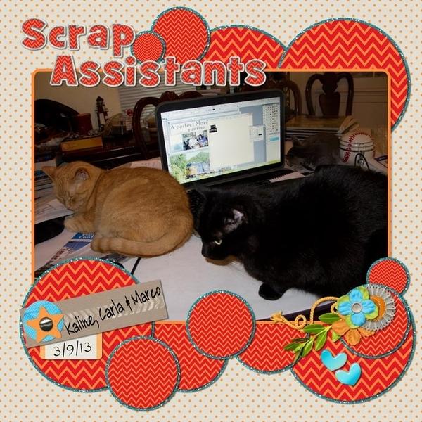 Scrap Assistants