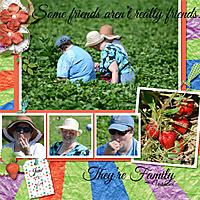 Strawberries_2015_600.jpg