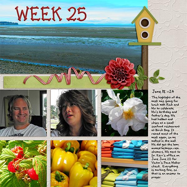 2013_Week_25