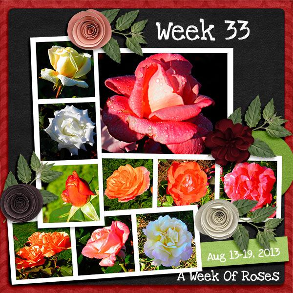 2013_Week_33