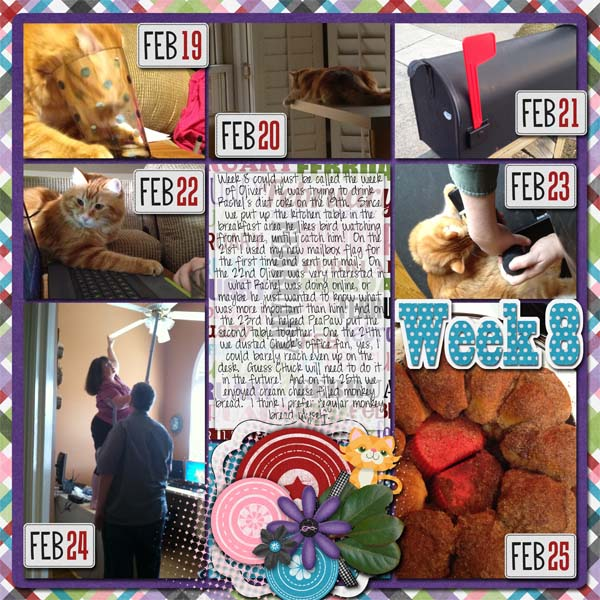 2013_Week_8_cap_525600_minutes_and_Feb_mega_CrisdamD-CL2013-Templates1-04_-_Orange_kitty_by_PinG