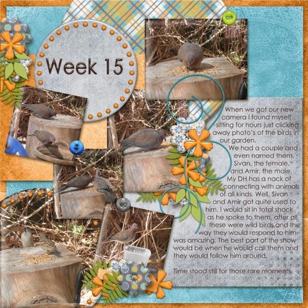 Project_365_Week_15