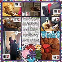 2013_Week_8_cap_525600_minutes_and_Feb_mega_CrisdamD-CL2013-Templates1-04_-_Orange_kitty_by_PinG.jpg