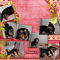 My_Page136.jpg