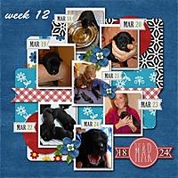 week-12_-2013.jpg
