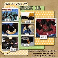 week-15_-2013.jpg