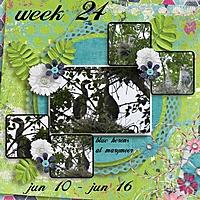 week-24-2013.jpg