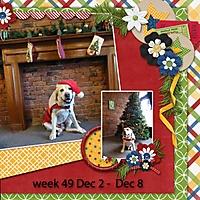 week-49-2013-.jpg
