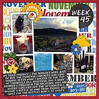 week45_copy.jpg