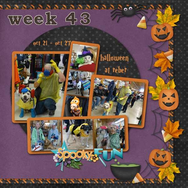 week-43-2013