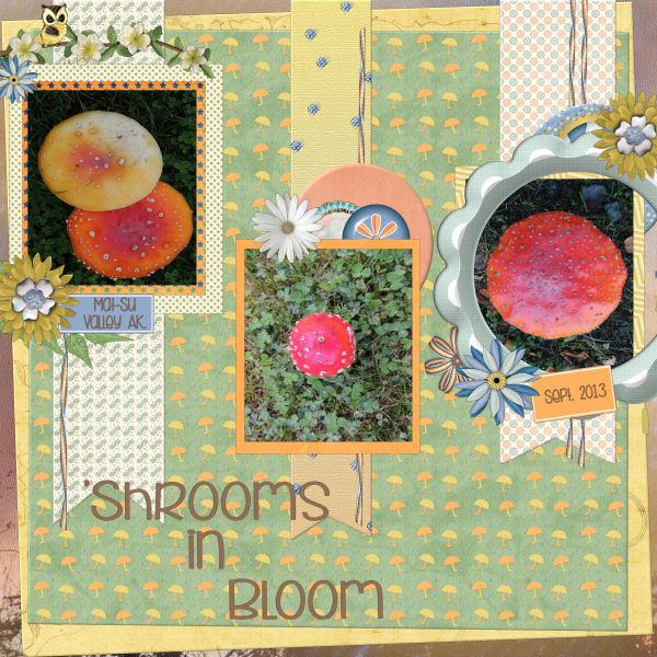 shroomsinbloomAK_tmb