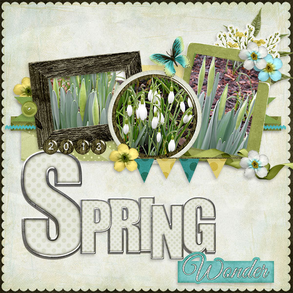 Spring_Wonder