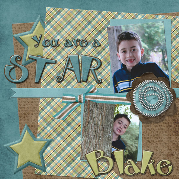 You are a STAR - Blake