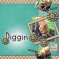 Digging1.jpg
