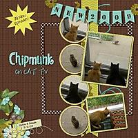chipmunk1.jpg
