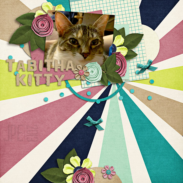 tabitha kitty