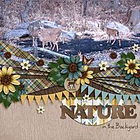 NatureBoy_oct14temp.jpg