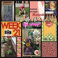 P52-Week-212016WEB.jpg