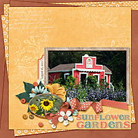 Sunflower_Gardens_copy.jpg
