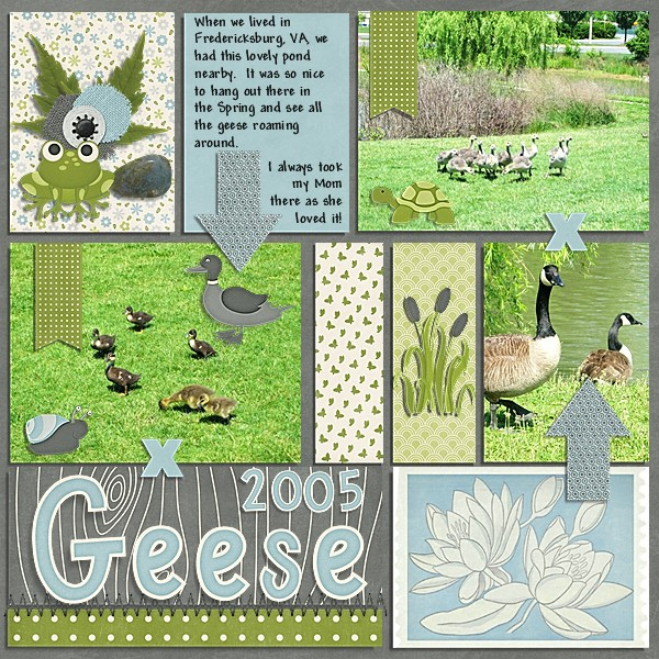 Geese 2005