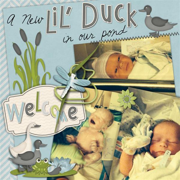 New Little Duck-pg1