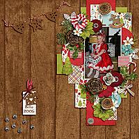CathyK_ChristmasTraditions-Tinci_BeautyInWinter_Bella2005_copy.jpg