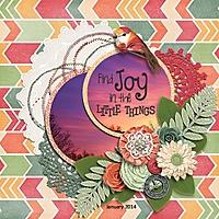 Find_Joy_January_2014_600x600.jpg