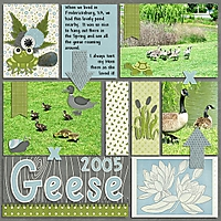 Geese_2005_600X600.jpg