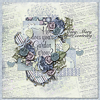 Tinci_SHS2_cathyk_gardengrow_robin_web.jpg