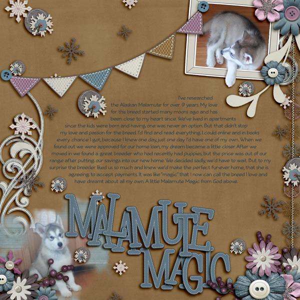 Malamute Magic
