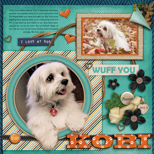 Kobi - week 4 Survivor Layout