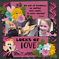 Locks-of-Love1.jpg