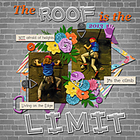 The-Roof-Is-The-Limit.jpg