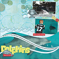 Dolphins-at-SW2.jpg