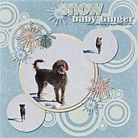 Snow_baby_Ginger.jpg