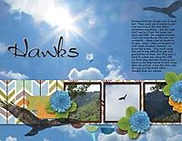 hawks_600_x_464_.jpg