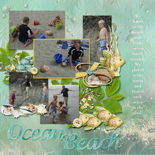 7-Andrew_beach_2013_small