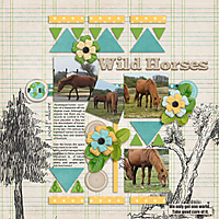 Wild-Horses-Assateague-Island-sts_sunflowersummer_template2-copy.jpg