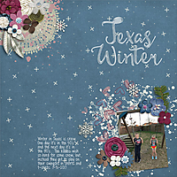 keesha-TexasWinter2017.jpg