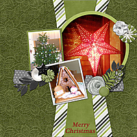 merry_christmas_bearbeitet-11.jpg