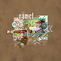 6-15-STS_TimetogoWild_CAP_WhiteSpaceVol4_Tempalte_Joel_TN_Camel.jpg
