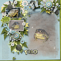 Toad_Color-Chal_GS_WEB.jpg