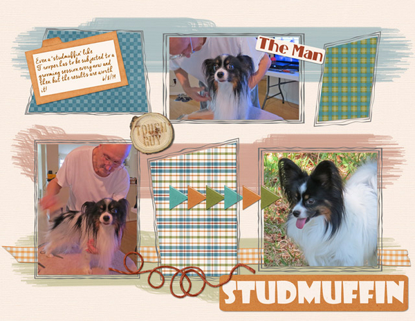 Studmuffin