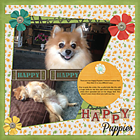 Happy-Puppies-web.jpg