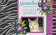 WYOR_Oct20141280x800_copy.jpg